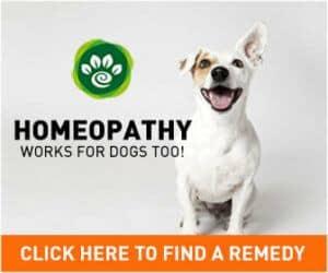 homeoanimal advert
