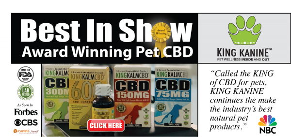 King Kanine best in show image, showing all their products